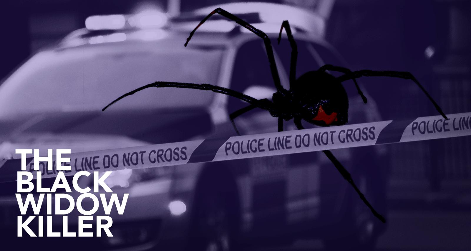 The Black Widow Killer investigation