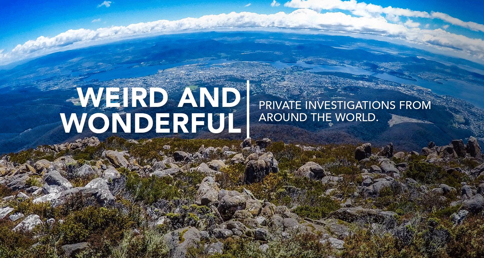 Weird and Wonderful investigations