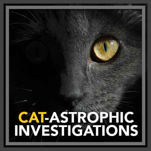 Catastrophic Investigations-post